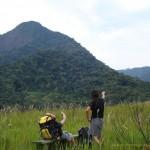 Pico do Baepi em Ilhabela